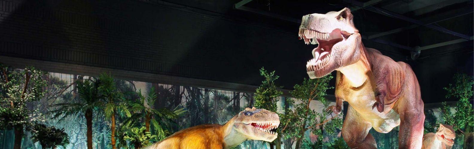 Resultado de imagen de dinosaurs tour mallorca
